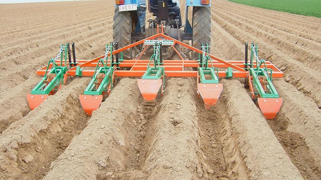 L'emploi d'interbuttes en pomme de terre permet de limiter en partie le ruissellement lors des premiers orages avant développement de la culture (Photo : FIWAP)