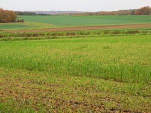 Bassin agricole équipé pour lutter contre l'érosion