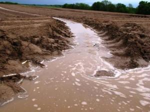 Erosion des sols en culture de pommes de terre