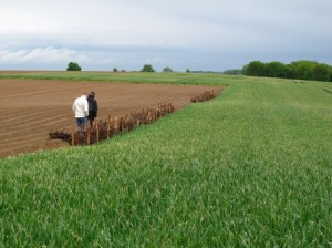 Lutte anti-érosion en cultures de pommes de terre