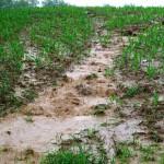Ruissellement érosif et formation de coulée de boue