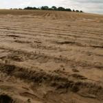 Comment stopper une coulée de boue ?